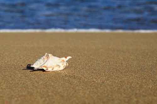 beach-costa-de-sol